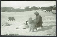 More details for 1907-09 british antarctic expedition postcard ernest joyce dogs and penguins
