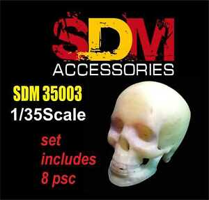 SDM 35003 Human skull (8 pcs), Acccessories for diorama, 1/35 scale