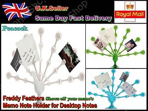 Freddy Feathers-Memo Note Photos Holder for Desktop Notes Green Peacock 3 Colors