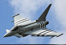 *NEW V2* Megajets RC Radio Controlled Eurofighter Typhoon Foam Parkjet Kit