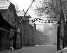 """Auschwitz German Concentration Camp 8""""x 10"""" World War II WW2 2 Photo Picture #8"""