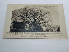 Vintage RPPC Postcard 375 yr old Wye Oak Tree —Wye Mills Maryland 1914