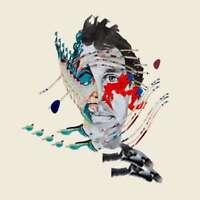 Animal Collective - Peinture Avec Neuf CD