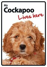 Cockapoo Lives Here A5 Plastic Sign
