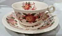 ANTIQUE COPELAND SPODE TEA / COFFEE CUP AND SAUCER - SPODES ASTER - ENGLAND