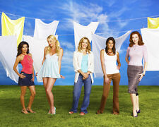 Desperate Housewives [Cast] (19078) 8x10 Photo