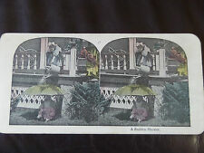 "c. 1895 COLOUR 3d STEREOGRAPH/ STEREOGRAM PHOTO CARD      ""A SUDDEN SHOWER"""