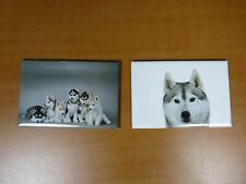 lot 2 Magnets / aimants 7,8 cm X 5,3 cm CHIENS : SIBERIAN HUSKY 11/12