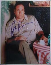 d2013 JAMES GANDOLFINI signed THE SOPRANOS - bada bing! - AUTHENTICATED