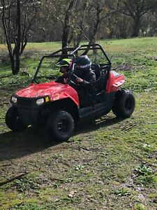 Polaris RZR 170 Side by Side Off Road Buggy