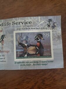 2019-2020 Federal Duck Stamp