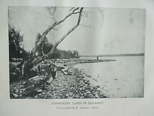 ANTIQUE PRINT C1910 INNISFALLEN LAKES OF KILLARNEY VINTAGE OLD PHOTO PRINT