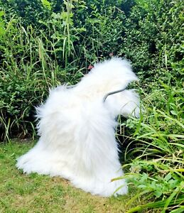 XXXL White Icelandic Sheepskin Rug - A++ 110cm by 80cm (2815)