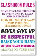 Classroom Rules #13 - NEW Classroom Motivational Poster (cm958)