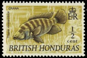 "BRITISH HONDURAS 235 (SG277) - Mouthbreeder ""Tilapia mossambica"" (pa88072)"