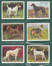 VICTORIA GALLERY - 10  SETS  OF  L 25  WILLS  ' DOGS '  CARDS            (REPRO)