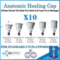10X Dental Titanium Regular Anatomic Healing Cap for internal Hex System Implant