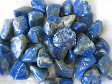 *ONE Lapis Lazuli A Grade 25mm Tumbled Stone QT1 Healing Crystal Learning Truth