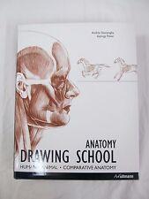2006 1st ed. ANATOMY DRAWING SCHOOL Human Animal Comparative Anatomy  B314