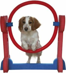 Small Dog Soft Rigid Foam Easy Assemble Agility Hoop Fun Exercise 32x56x68.3cm