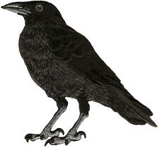 Raven - American Black Crow - Embroidered Iron On Patch - LEFT