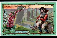 IMAGE CHOCOLAT GUERIN BOUTRON / BRETAGNE / JOUEUR de CORNEMUSE & FLEUR DIGITALE