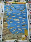 """NEW VTG BLATZ BEER """" SPECIES IN MOTION """" BAR SIGN BASS FISHING POSTER FISH LURE"""