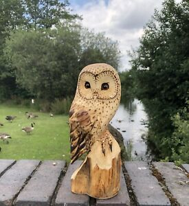 Bespoke Chainsaw Owl Carvings In Wood OW1313TT4