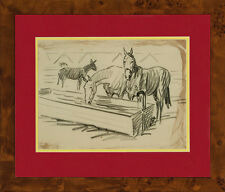 Original Pencil Equine Drawing by Paul Desmond Brown