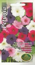 Flower Seeds Petunia For Hanging Pot Beds Containers Pictorial Packet Mix UK