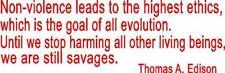 Non Violence Bumper Sticker Edison Quote