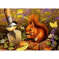 Full Drill DIY 5D Squirrels Diamond Painting Kits Art Embroidery Home Decor Gift
