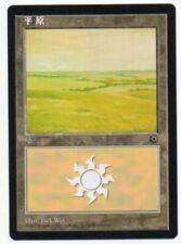 MTG S-Chinese Plains (A) Alternate Art Portal NM