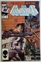 Punisher 2 ~ High 9s Condition ~ White Pages ~ Great CGC Candidate