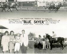 "1965 - BLUE SKYER - 3 Photo Composite at Tropical Park - 10"" x 8"""