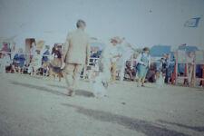 Vintage Kodak Kodachrome Negative Slide Image - Dog Show, 1976