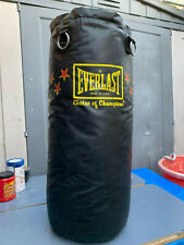 Everlast Heavy Punching Bag 50 Pound Fitness Workout, Black 50Lb Mma