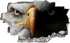 Adler Augen Eyes Eagle Vogel Wandtattoo Wandsticker Wandaufkleber C0114