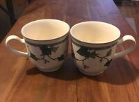 2 NORITAKE KELTCRAFT Ivy Lane #9180 Irish Coffee Cups/ Mugs- Made in Ireland