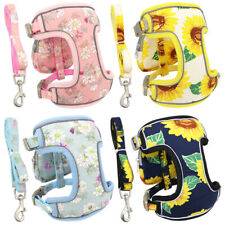 Reflective Dog Harness Lead and Treat Bag Soft Mesh Walk Vest for Small Dog Cat