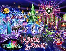 California - Disney WORLD OF COLOR - WINTER DREAMS - Flexible Fridge Magnet