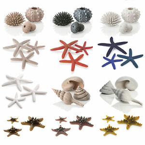 Oase BiOrb Ornaments Sea Shells Stars Urchins Aquarium Fish Tank Decorations