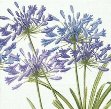 Caspari Agapanthus Paper Luncheon Napkins, Pack of 20