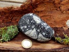 Impaktit Norwegen Meteorit Einschlag Gardnos 218g xl selten