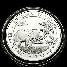 Somalia Elefant 2019 Silber Münze 1 Unze OZ Silver African Wildlife Elephant