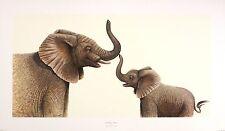 """Warwick Higgs """"tronc call"""" éléphant veau, mignon art taille:30 cm x 58 cm rare"""