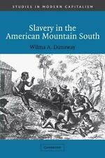 Slavery in the American Mountain South (Studies in Modern Capitalism)