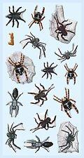 Spinne Spinnen Halloween * Softy Design Sticker * Aufkleber Scrapbooking