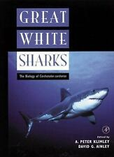 Great White Sharks : The Biology of Carcharodon Carcharias  (Paperback)