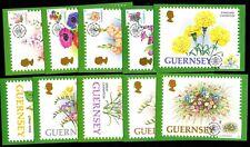 Guernsey 557/66 Maximumkarten Blumen u.a. Nelken , Rosen